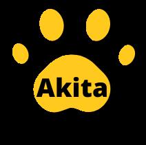 Akita france